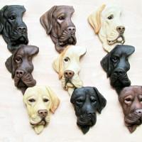 Labradors by Alison Payne and Antony Halls