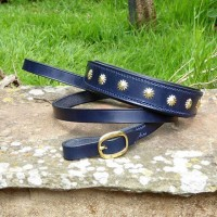 ESB Leather Bespoke Navy collar and lead