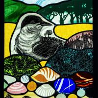 Arctic Tern by Liz Huppert