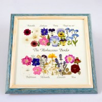 Framed pressed flowers by Diane Blandford