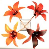 Flowers by Black Cat Designs