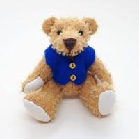 Teddy in blue by Janis Waldron