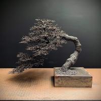 Kyoto by David Powell